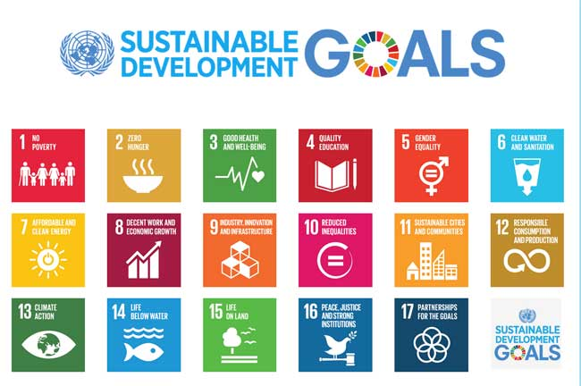 The SDGs, corporate strategy and corporate reporting